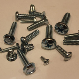 Incoloy Alloy 800 Screw